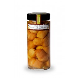 Mini Babas au Limoncello de Menton 570 ml